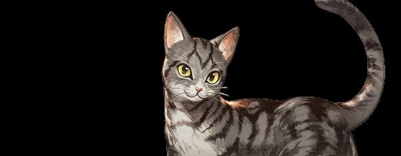グラブルの猫